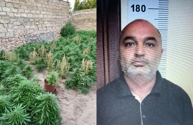 Bakı sakini 64 kiloqram narkotiklə tutuldu – FOTO