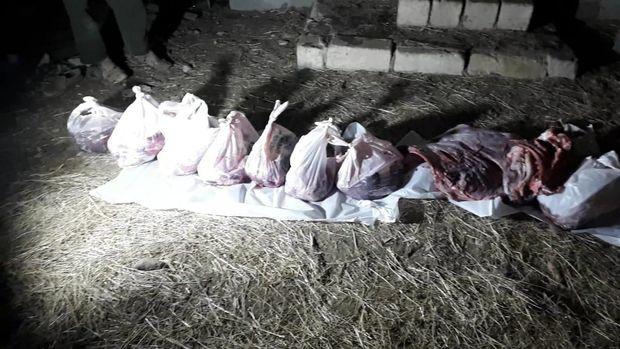 AQTA qanunsuz heyvan kəsimi fəaliyyətinin qarşısını aldı – FOTO