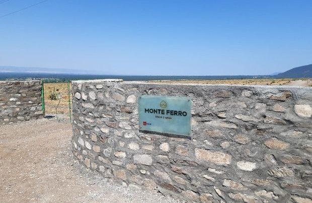 Şəki və Qax rayonlarının əkinə yararsız ərazilərində iki min hektara yaxın fındıq bağları salınıb – FOTO