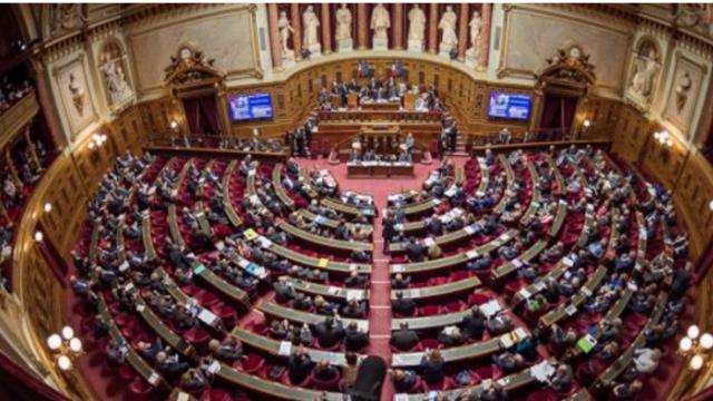 Fransadakı soydaşlarımız Senata qarşı çıxdı