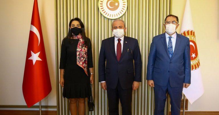 Azərbaycan Ombudsmanı Türkiyə parlamentinin sədri ilə görüşüb