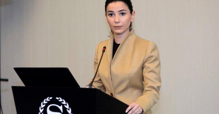 Gürcüstanın iqtisadiyyat nazirinə turizm üzrə müavin təyin olunub